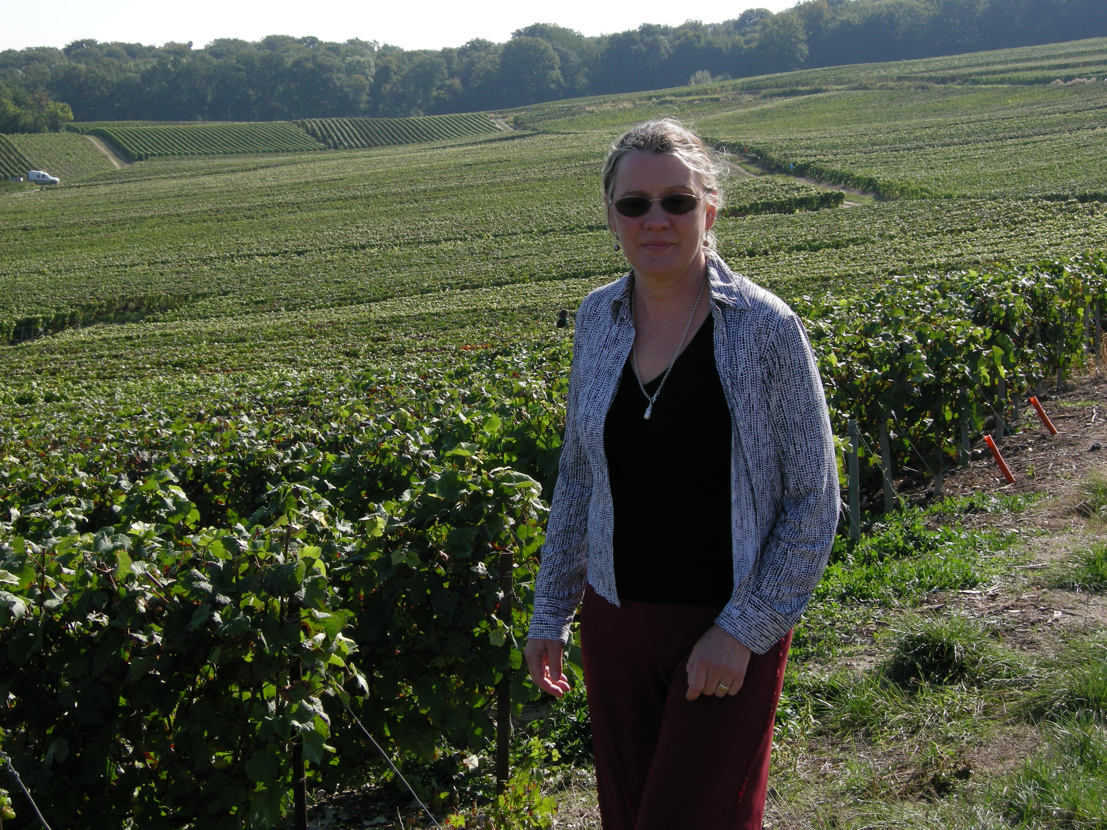 2009 - Writing about champagne
