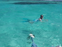 2008 - Tobago Cays, Caribbean
